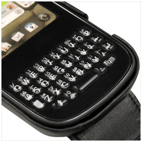 Palm Pixi  leather case